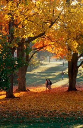 fall scene at unh