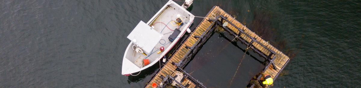 ocean engineering fish farm