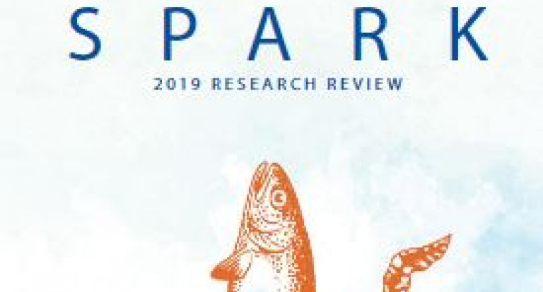 Spark 2019 cover