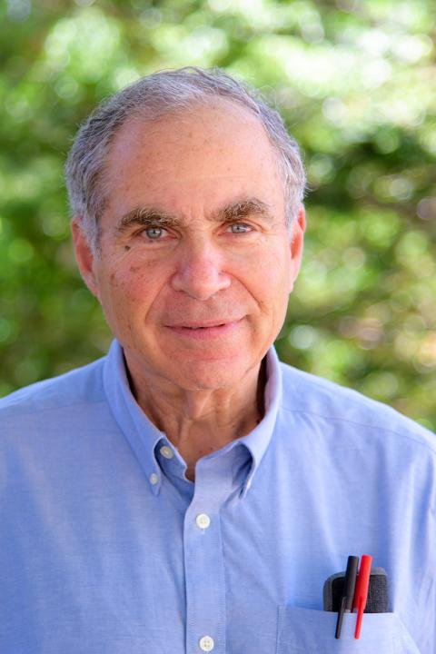 Professor Art Greenberg